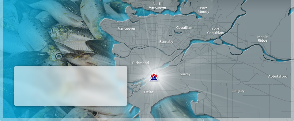 Our Delta location offers strategic access to and from major highways and container ports in and around 